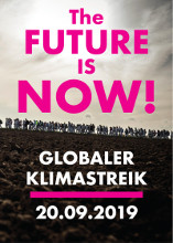 The Future is Now! IL-Flyer zum Global Earth Strike
