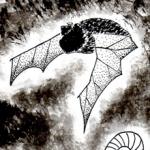 27.10.2017 - Punk Hardcore e presentazione Tilikum 1