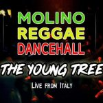 09.11.2019 - The Young Tree / Molino Reggae Dancehall ls. Wadra Sound 1