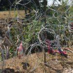 Appello a dieci giorni di mobilitazione contro frontiere e razzismo di Stato in occasione del processo per i fatti del Brennero