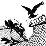 Modena - Aggiornamenti e appello alla solidarietà con i 5 detenuti del carcere di Modena