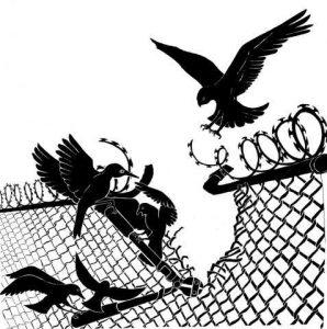 Proposta di battitura nazionale dentro le carceri da parte delle detenute per il 1 febbraio